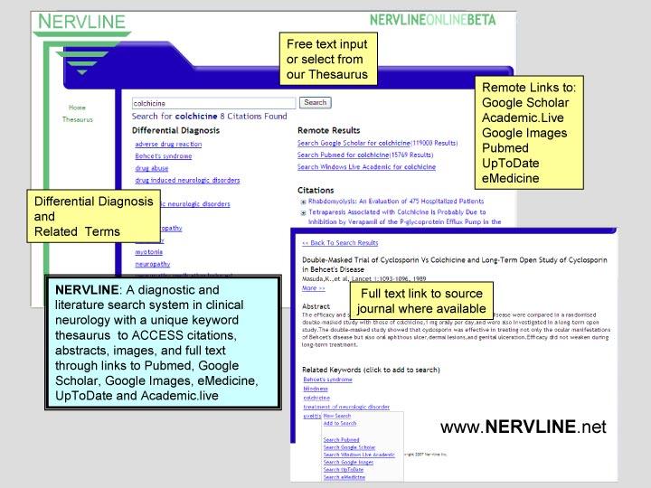 online_nervline_demo